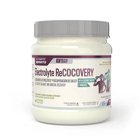 ELECTROLYTE RECOCOVERY BOTE SPORTS 450 GR